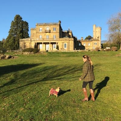 Kent wedding venue Salomons Estate expands its offering of dog-friendly amenities