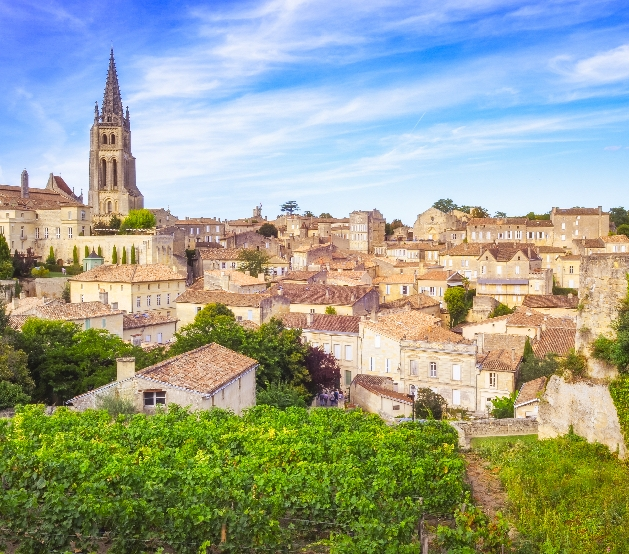 A roof top view of Bordeaux