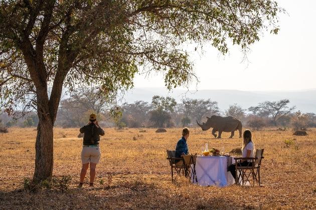 safari dinner rhino