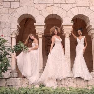 Wedding World